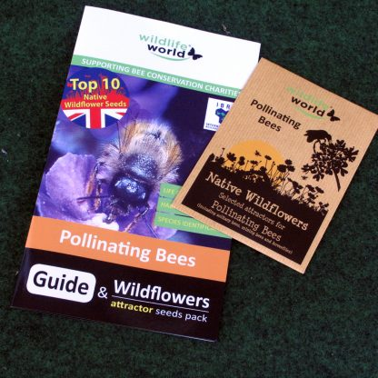 Wild Flower Seeds Mix for Poliinating Bees